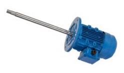 立式长轴泵电机